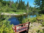 aroostook river camp 06